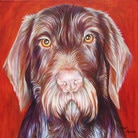 Chimo dog portrait by artist Kate Green