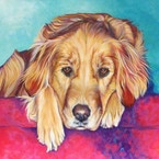 Chloë dog portrait by artist Kate Green