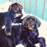 Maddy and Toby dog portrait by artist Kate Green