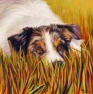 Rafter Dog Painting by artist Kate Green