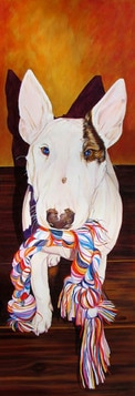 Bull Terrier Dog Portrait by artist Kate Green