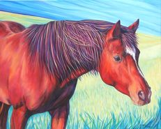 Sam Horse Painting by artist Kate Green